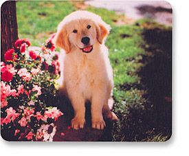 MH Designer Mouse Pad Puppy - Image A
