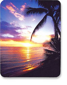 MH Designer Mouse Pad Seascape Only $1.95  at USBGear.com