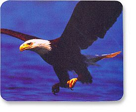 MH Designer Mouse Pad Eagle Only $1.95  at USBGear.com