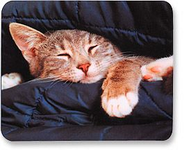 MH Designer Mouse Pad Sleepy Cat - Image A